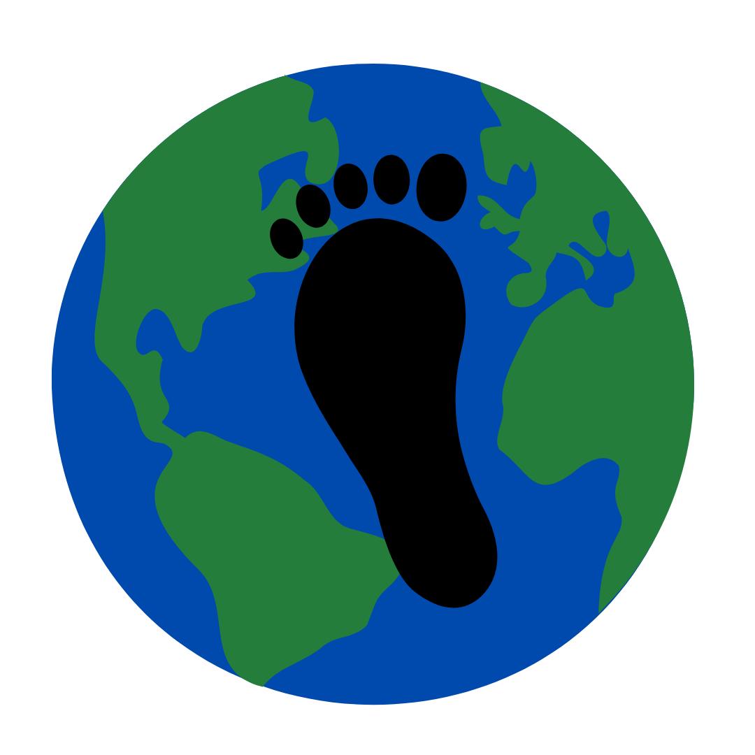 solar panels help reduce our carbon footprint.